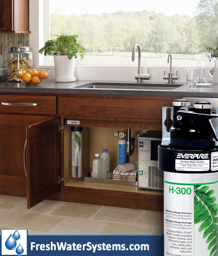 Everpure-h-300-drinking-water-system