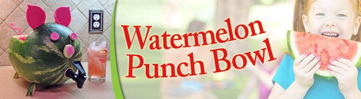 Watermelon-punch-bowl-top-banner
