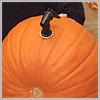 Tap-into-pumpkin-keg